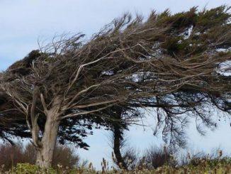 Ветер Мистраль во Франции.