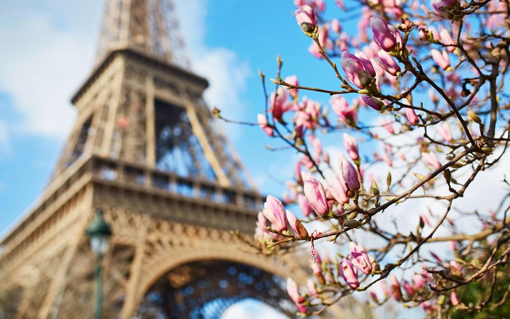 Париж весной - Париж в марте